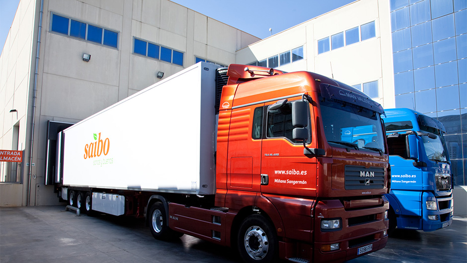 Diseño de identidad corporativa Saibo - Diseño de rotulación de vehículos para empresa de alimentación - Estudio de diseño gráfico Valencia Pixelarte