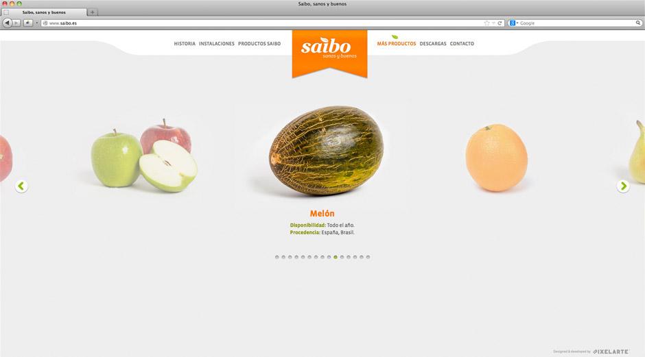 Diseño de identidad corporativa Saibo - Diseño web responsive diseño digital - Estudio de diseño gráfico Valencia Pixelarte